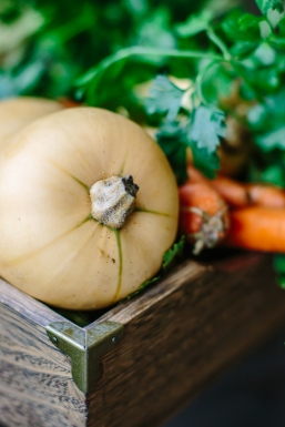 veggies_126